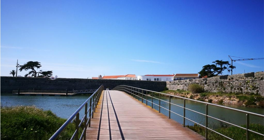 Peniche's Blue & White