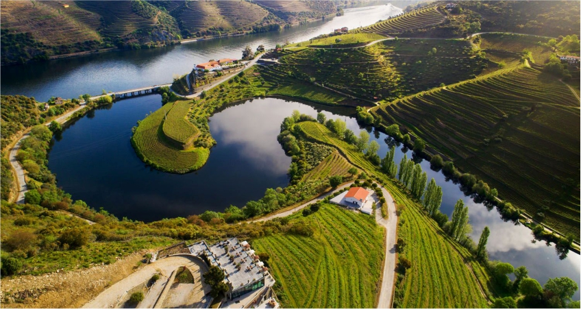 Vila Galé Douro Vineyards